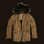 Hollister Imperial Beach Hooded Coat